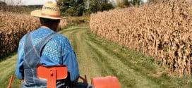 Çiftçi Nasıl Olunur ?