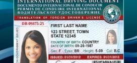 Uluslararası Sürücü Belgesi Sahibi Nasıl Olunur ?